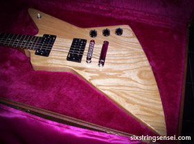 Gibson explorer guitar case